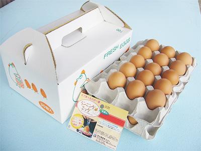 阿久比町 青木養鶏場 ランニングエッグ